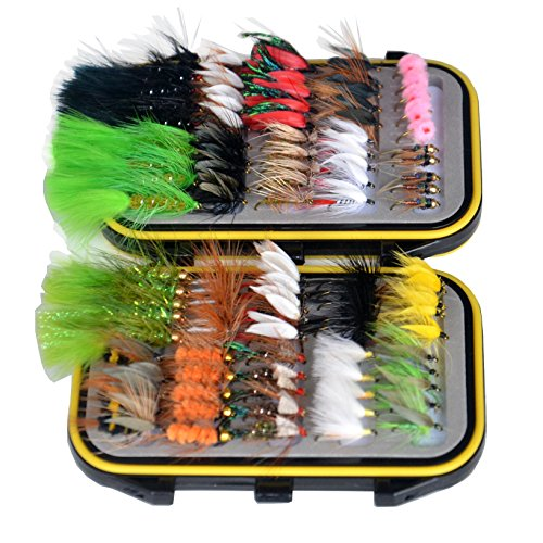 (Double Side Waterproof Pocketed Fly Box Packed with 100 Assorted Dry Flies Fishing Package)