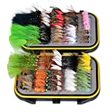 Double Side Waterproof Pocketed Fly Box + Assorted Dry Flies Fishing Lure Pack of 100 Fly Lure