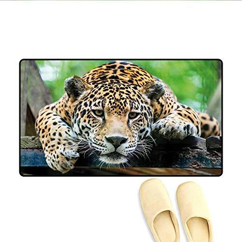 (Door-mat South American Jaguar Wild Animal Carnivore Endangered Feline Safari Image Bath Mats for Floors Orange Black Green 20