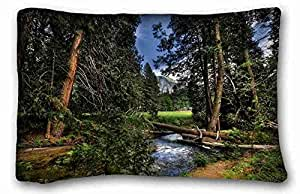 Generic Personalized Nature Custom Cotton & Polyester Soft Rectangle Pillow Case Cover 20x30 inches (One Side) suitable for King-bed