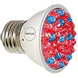 RubyLux Red & Blue LED Bulb - 640 to 660nm and 400 to 415nm Size Small 2""