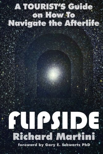 FlipSide: A Tripper's Guide on How to Navigate the Afterlife