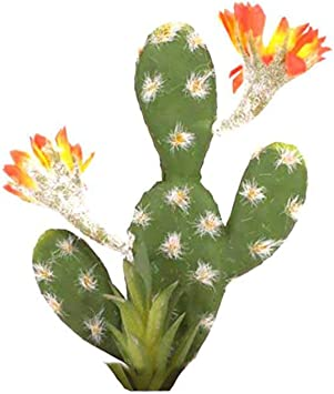AEROBATICS-Planteur Artificiel en Plastique d/écoratif Artificiel de Simulation de Plantes artificielles de Faux Cactus , Mini Pots de Jardin artificiels de Plantes de Cactus