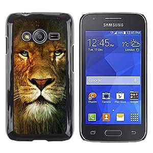 TopCaseStore / la caja del caucho duro de la cubierta de protección de la piel - Lion Portrait Green Eyes Wild Big Cat Africa - Samsung Galaxy Ace 4 G313 SM-G313F