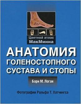 Book Anatomiya golenostopnogo sustava i stopy