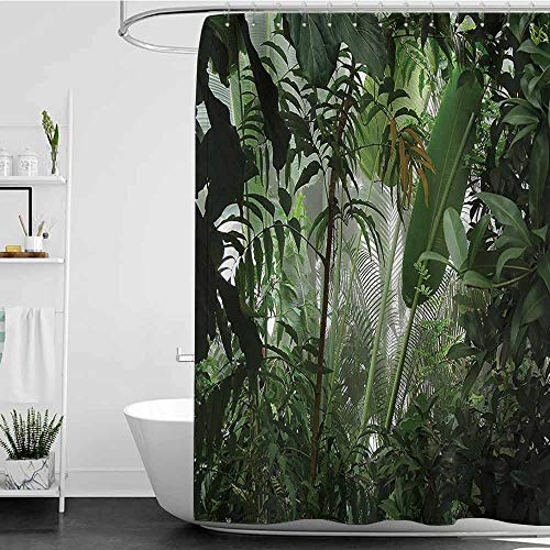 Andasrew Shower Curtains and s Rainforest Decorations,Tropical Rainforest Preservation Humidity Palm Tree Wild Environment Misty Nature,Green W48 x L84,Shower Curtain for Bathroom