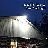 CINOTON LED Barn Light 42W, 5000K Daylight Dusk to