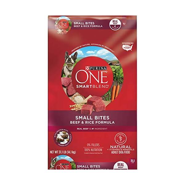 Purina ONE SmartBlend Natural Adult Dry Dog Food 1