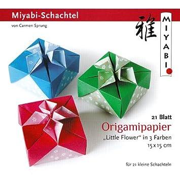 Art-Manufacturer-Design Origami Set Miyabi de caja con instrucciones (en alemán): Amazon.es: Oficina y papelería