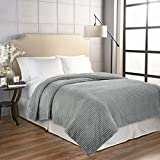 Beautyrest Giverny Anti-Microbial Technology Blanket, King, Grey