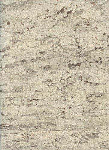 York Wallcoverings RN1022 Modern Rustic Sueded Cork Wallpaper (Wallpaper Suede Texture)