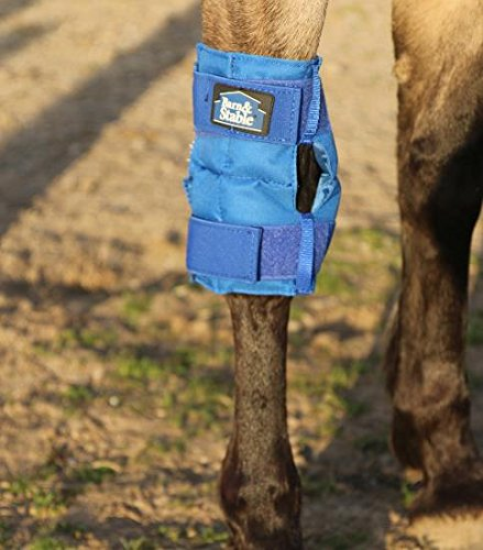 Stable Boots Horse (Barn & Stable Ice Boot Tendon Therapy Horse leg Wraps)