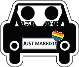 Rainbow Same Sex Marriage Home Decal Vinyl Sticker 14'' X 12''