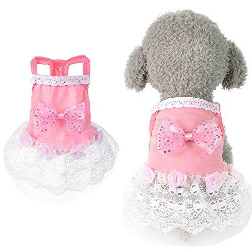 Tutu Xs Invernale Abbigliamento Vestito Sposa Abito Pandada Vestiti Da Cane Cani Per Per Rosa Papillon 6Fpxap