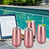 4 Pack Stemless Double Insulated Champagne Flute