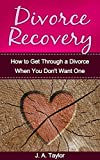 Divorce Recovery:  A Step-by-Step Guide on How to Get Through a Divorce When You Don't Want One: A Step by Step Guide on How to Get Through a Divorce When ... Your Breakup, Marriage Counselling Book 1)
