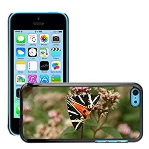 Hot Style Cell Phone PC Hard Case Cover // M00117444 Butterfly Flower Summer Insect Macro // Apple iPhone 5C