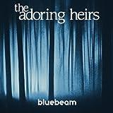Bluebeam offers