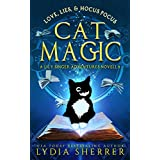Love, Lies, and Hocus Pocus Cat Magic: A Lily Singer Adventures Novella (A Lily Singer Cozy Fantasy Novella Book 0)