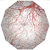 Sun umbrella, umbrella UV Protection Auto Open Close Coral,Monochrome Watercolor Image of Leafless Fall Autumn Tree Branches Peaceful Windproof - Waterproof - Men - Women -Lightweight- 45 inches