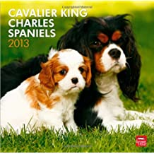 Cavalier King Charles Spaniels 2013 Square 12X12 (Multilingual Edition)