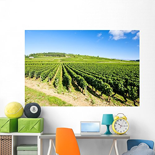 Burgundy Cote (Wallmonkeys Vineyards Cote Beaune near Wall Mural Peel and Stick Graphic (72 in W x 48 in H) WM178621)