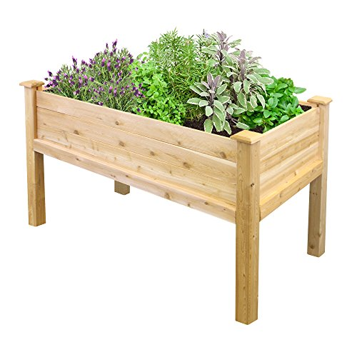 Greenes Fence RCEV2448 Fence Elevated Garden Bed, 48' L x 24' W x 31' Cedar