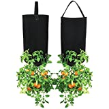 Upside Down Tomato Planter, (2- pack) | Great for Tomatoes Cucumbers Zucchini Peppers Eggplant etc.