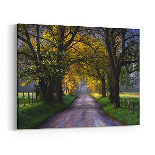 Rosenberry Rooms Canvas Wall Art Prints - Cades Cove Great Smoky Mountains National Park Scenic Landscape Spring Scenic Landscape Photography On Sparks Lane (20 x 16 inches)