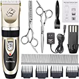 BestTrendy Professional Cat Dog Clippers, Low Noise Rechargeable Cordless Electric Pet Grooming Tool Kit with Combs, Scissors, Clean Brush (Gold+Black)