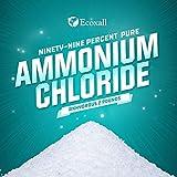 Ecoxall Chemicals - Number 1-99.9-Percent