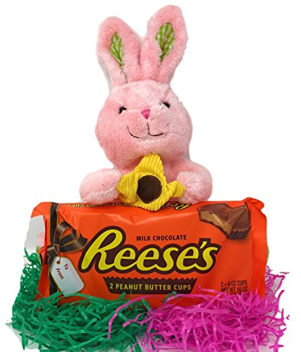 Easter Bundle, 2 Half Pound Reeses Cup chocolate giant size candy bars Bundled with Pink Easter Bunny