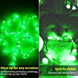 12 Pack Green Led Fairy Lights Battery Operated