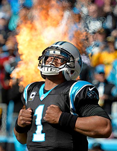 Cam Newton Poster 18