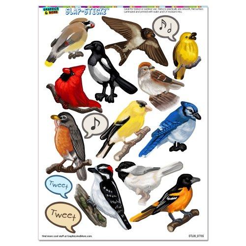 North American Birds - Finch Cardinal SLAP-STICKZ(TM) Party Scrapbook Craft Car Window Locker - Sticker Finch