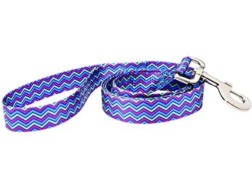 DoggyRide Fashion Dog Leash, 5-Feet, Heightened Hyacinth, Blue/Lime