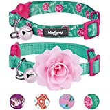 """Blueberry Pet 4 Designs Pack of 2 Cat Collars, The Power of All in One Relaxing Jungle Green Adjustable Breakaway Cat Collar for Girl & Boy with Bell & Detachable Flower, Neck 9""""-13"""""""