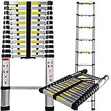 Aluminum Telescopic Extension Ladder