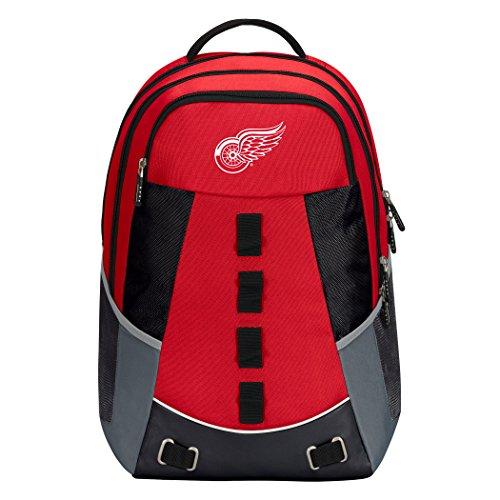 NHL Detroit Wings