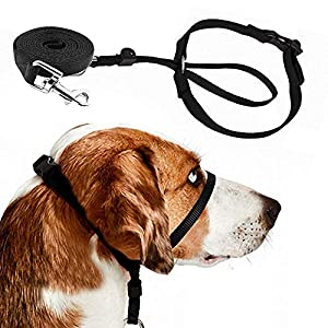 Barkless Dog Head Collar, Adjustable and Padded, No-Pull Training Tool for Dogs on Walks, Includes 1 Dog Leash and Free Training Guide, 3 30