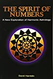img - for The Spirit of Numbers book / textbook / text book
