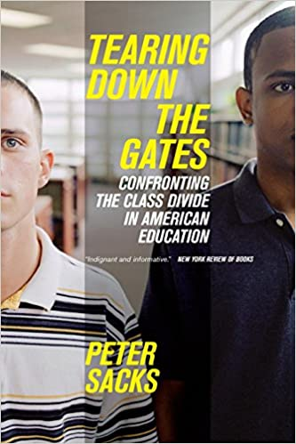 Tearing Down the Gates Book Cover