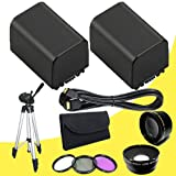 TWO BP-819 Lithium Ion Replacement Battery + 43mm 3 Piece Filter Kit + Wide Angle Lens + 2x Telephoto Lens + Mini HDMI Cable + Full Size Tripod for Canon Vixia HFM40 HFM41 HFM400 HV30 Digital Camcorders DavisMAX BP819 Accessory Bundle