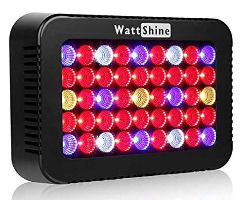 Hydroponic Led Lighting Systems in US - 3