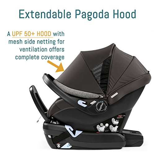 Peg Perego Primo Viaggio Nido Car Seat with Load Leg Base, Atmosphere