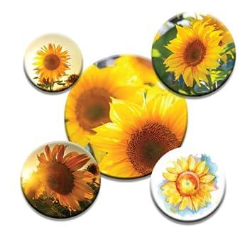 Amazon.de: bedruckt Schneidern Schnittmuster Gewichten. Sonnenblume ...