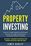 Property Investing: How to Create Wealth and Passive Income Through Smart Buy & Hold Real Estate Investing. An Exact 18-Month Strategy for Making an Extra 100k Per Year