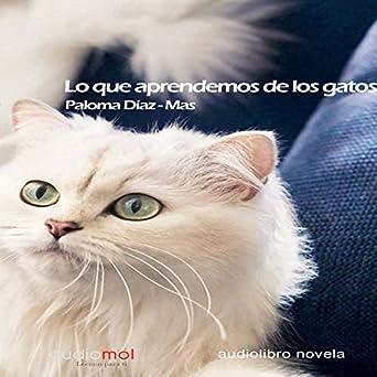Lo que aprendemos de los gatos [What We Learn from Cats]