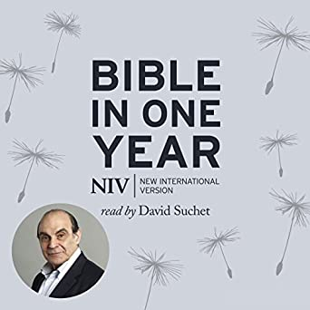 NIV Audio Bible in One Year Read by David Suchet (Audio Download