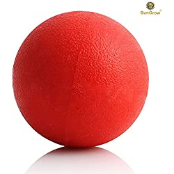 SunGrow Indestructible Pitbull Puppy Fetch Ball - Bouncier, Buoyant in Pool or Lake Fun - Encourages Leap & Jump Chase Game - Bright Red Color Attracts Pet's Attention - Strengthens Human-Animal Bond